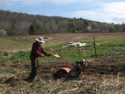 Dad rototilling3, April 23